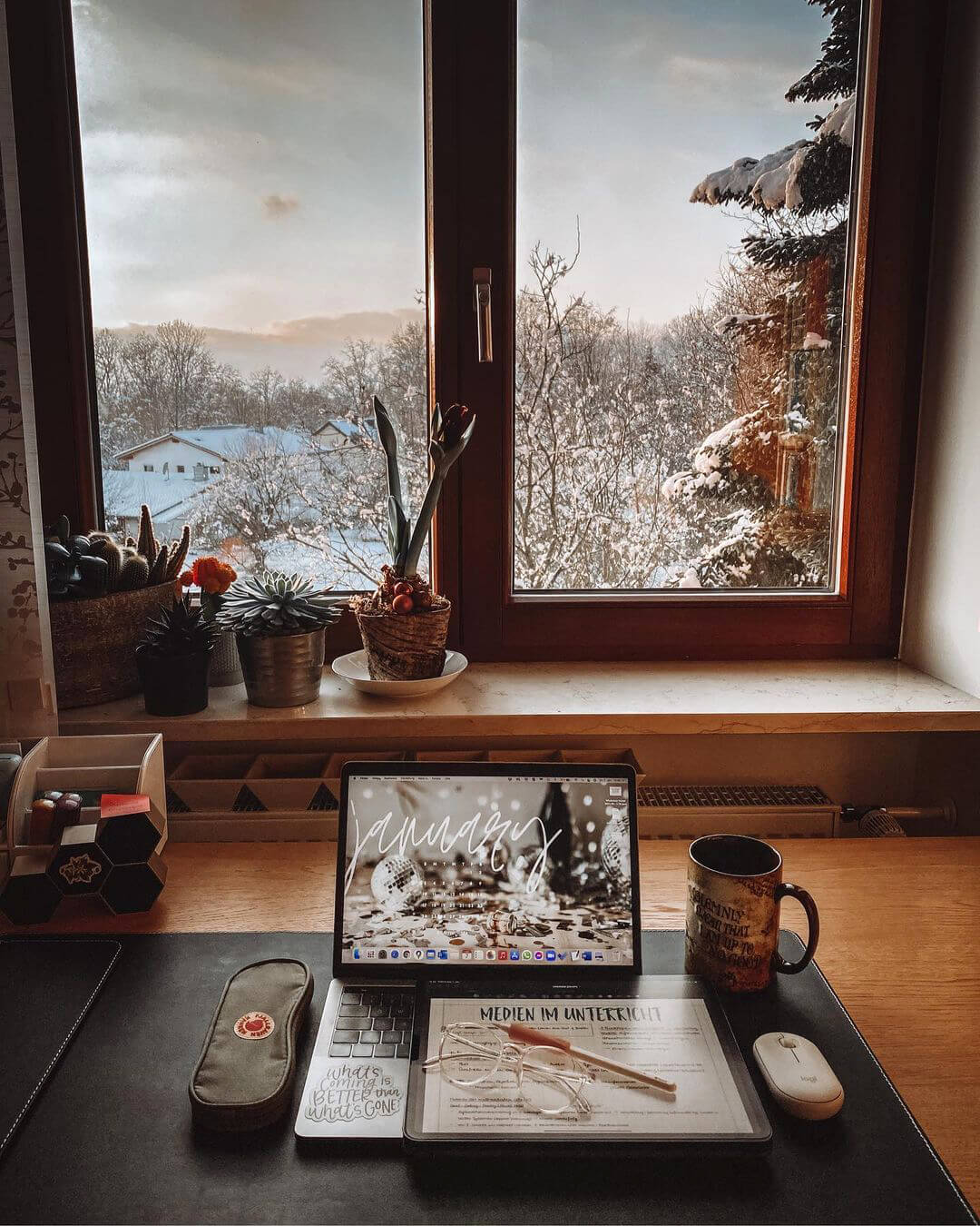 A window in Lisa's study room with an amazing view of the nearby forest