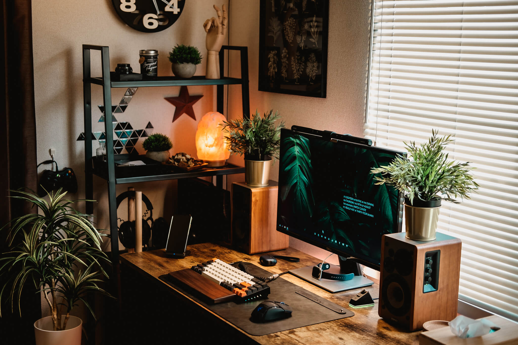 Home office with plants and Himalayan salt lamp in Japan