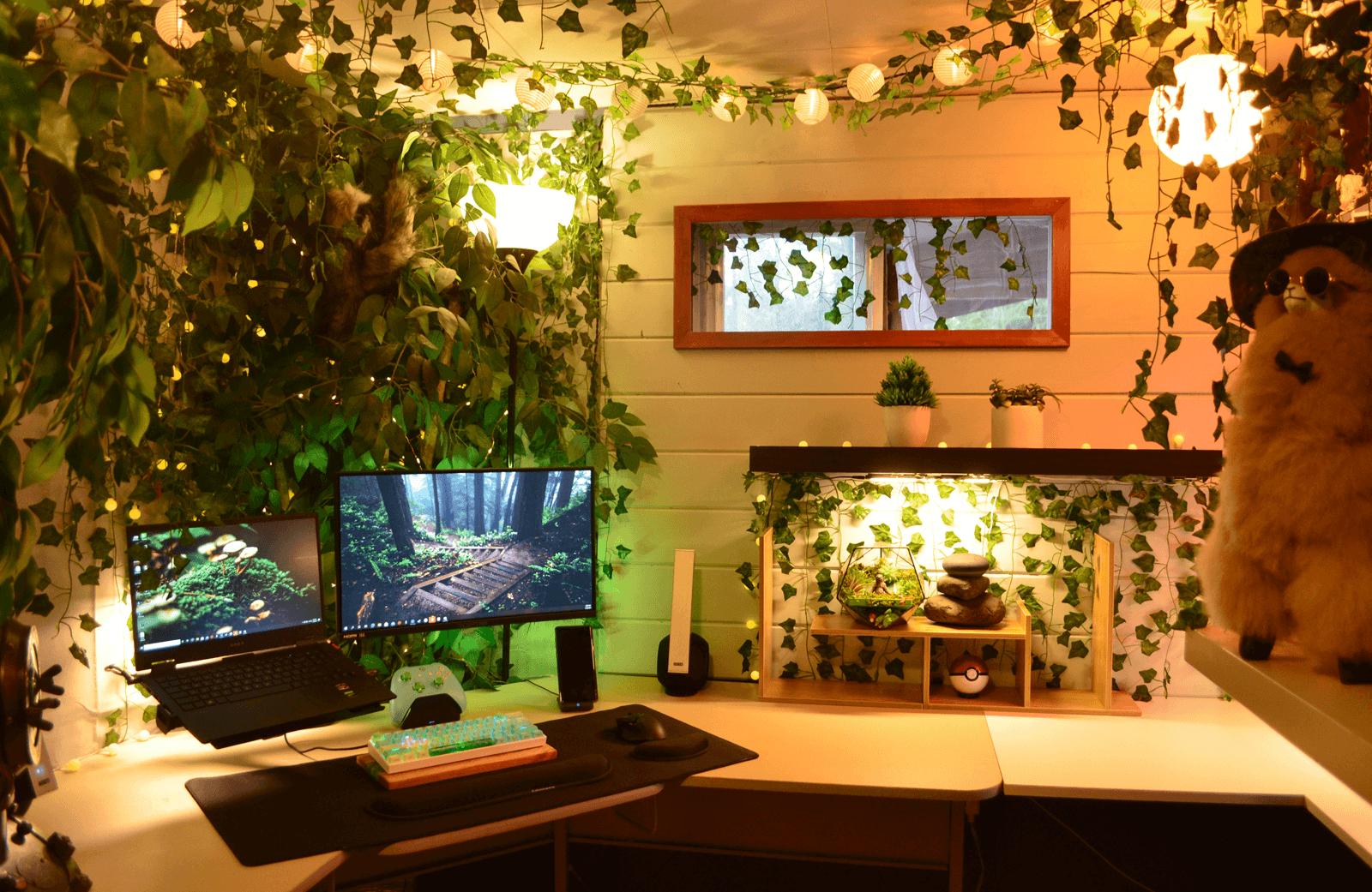 Urban Jungle home setup in Washington