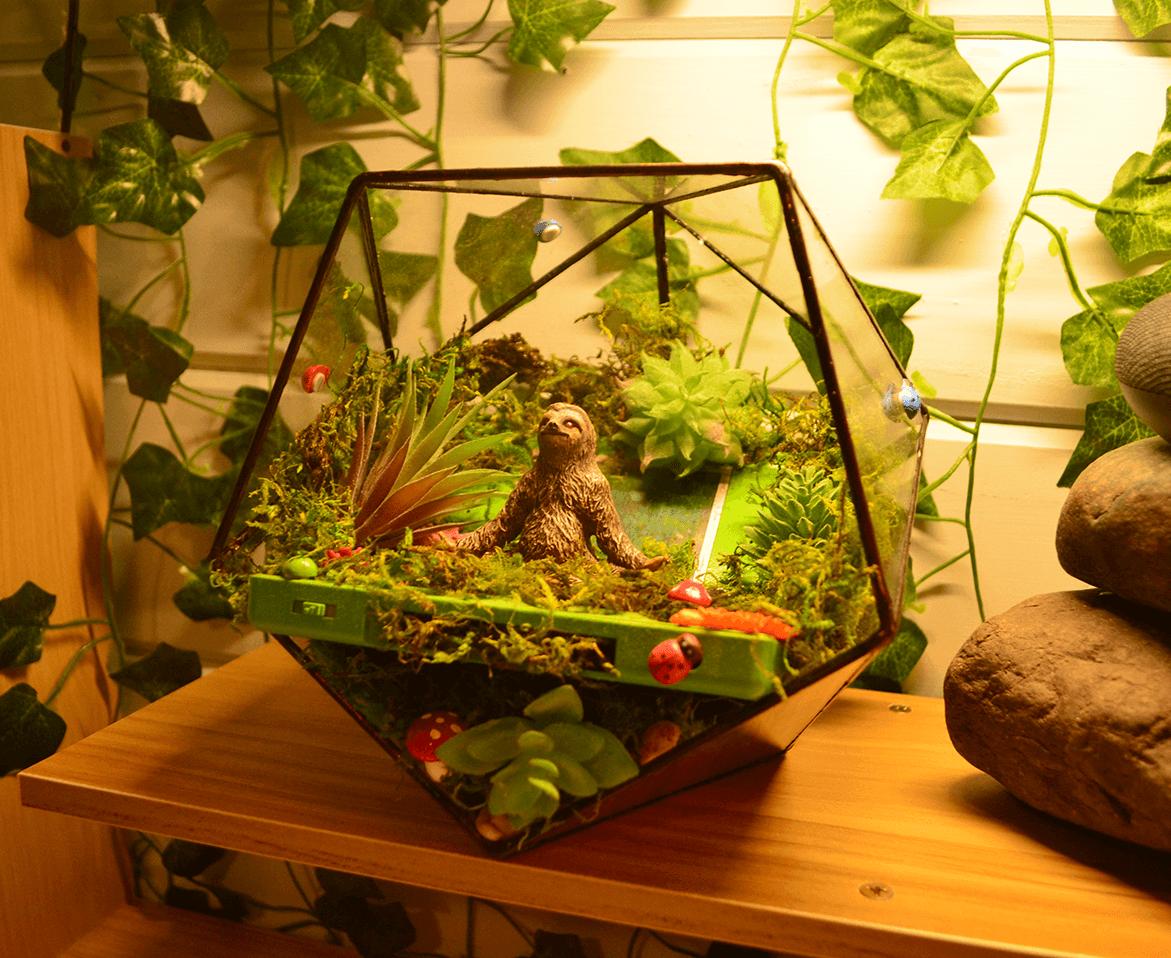 Plants terrarium in an old Nintendo DS Lite