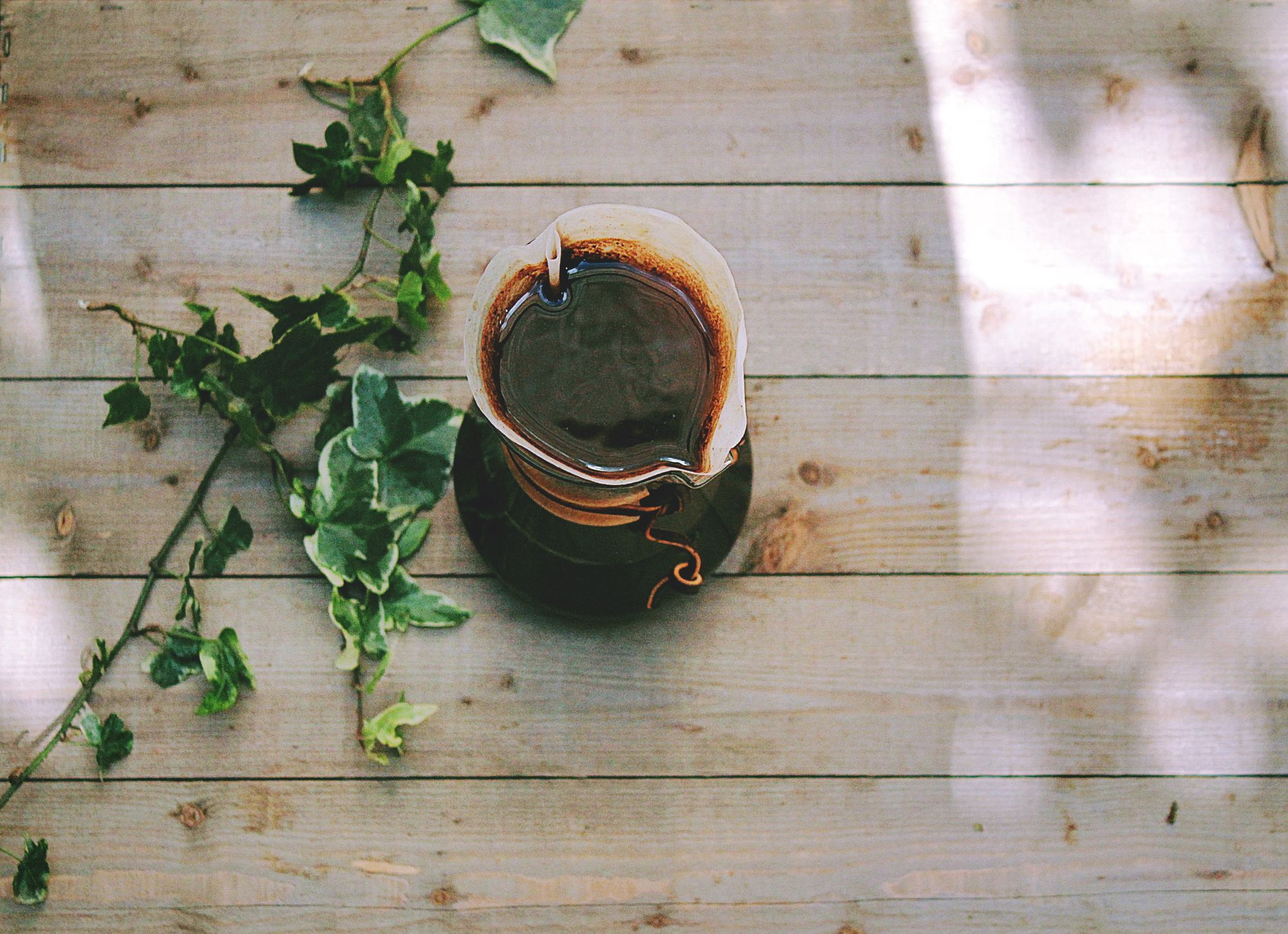 Ivy plant and coffee on the table